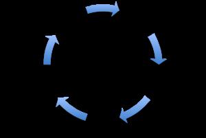 ciclo-fomo