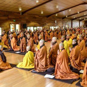 El camino del corazón, las enseñanzas del Buda ante un dilema